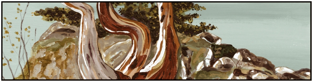 banner web painting 3x12 stylized
